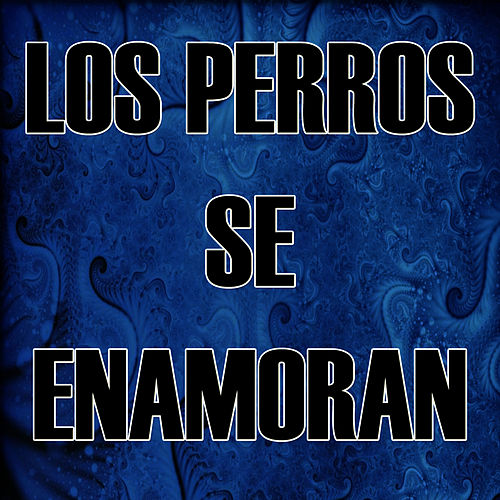 Los Perros Se Enamoran by The Kings of Reggaeton