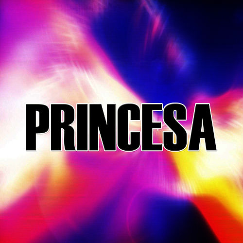 Princesa by The Kings of Reggaeton