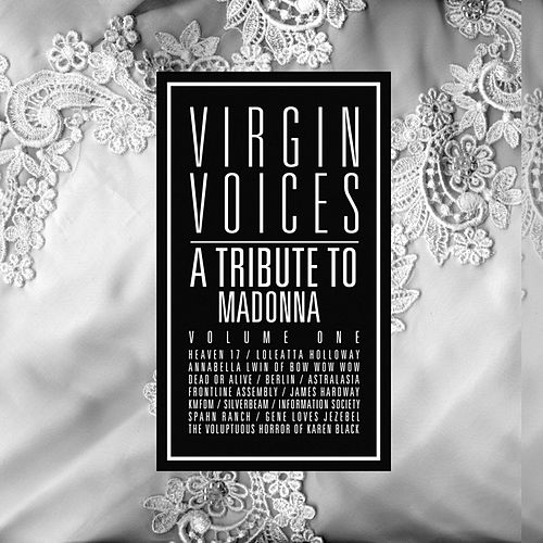 A Tribute To Madonna: Virgin Voices by Various Artists