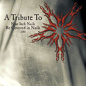 A Tribute To Nine Inch Nails: Re-Covered In Nails 2.001 by Various Artists