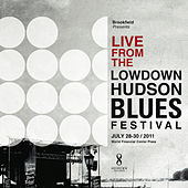 Live from the Lowdown Hudson Blues Festival by Various Artists