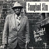 Be Careful How You Vote by Sunnyland Slim
