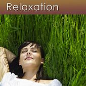 Relaxation II (Relaxation Music, Sleep Music and the Sounds of Nature for Your Health and Stress Relief) by Dr. Harry Henshaw