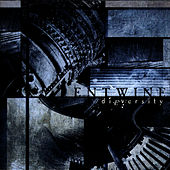 DiEversity by Entwine