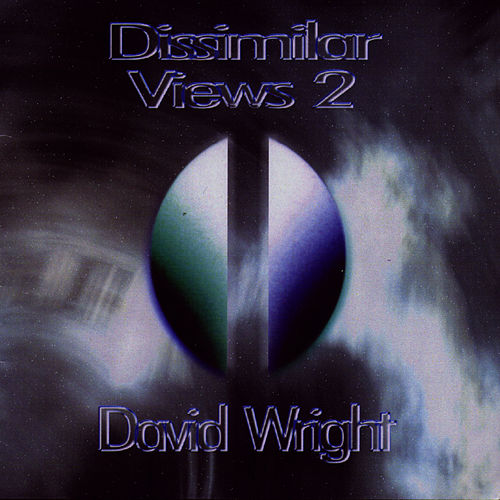 Dissimilar Views 2 by David  Wright