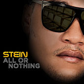 All or Nothing by Stein