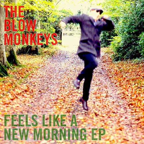 Feels Like a New Morning EP by The Blow Monkeys