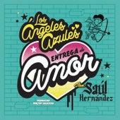 Entrega de Amor by Los Ángeles azules