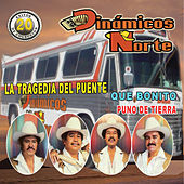 20 Exitos de Coleccion by Los Dinamicos Del Norte