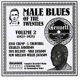 Male Blues Of The Twenties Vol. 2 (1923-1928) by Various Artists