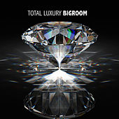 Total Luxury Bigroom by Various Artists
