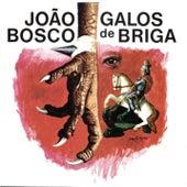 Galos De Briga by João Bosco