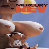 Boces by Mercury Rev