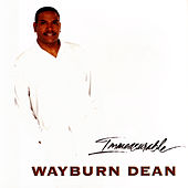 Immeasurable by Wayburn Dean