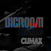 Big Room Climax by Various Artists