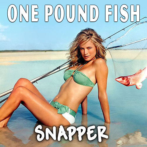 One Pound Fish - Single by Snapper