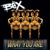 What You Are (The Dance Remixes), Vol. 2 by Bex