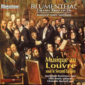 Musique au Louvre sous le Second Empire by Jean-Claude Bouveresse