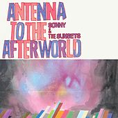 Antenna To The Afterworld by Sonny & The Sunsets