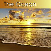 The Ocean (Relaxation Music and the Peaceful Sounds of the Ocean) by Dr. Harry Henshaw