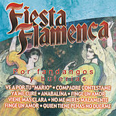 Fiesta Flamenca por Fandangos y Bulerías by Various Artists