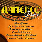 Flamenco Puro by Various Artists