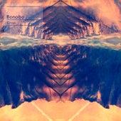 Cirrus - Single by Bonobo