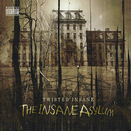 The Insane Asylum by Twisted Insane