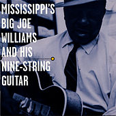 Mississippi's Big Joe Williams and His Nine-String Guitar by Big Joe Williams