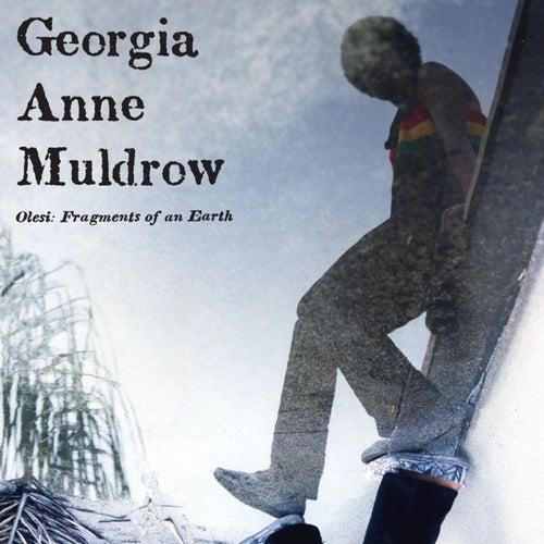 Olesi: Fragments Of An Earth by Georgia Anne Muldrow