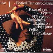 Festival Flamenco Gitano 1 Live by Various Artists