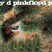 A Saucerful Of Secrets by Pink Floyd