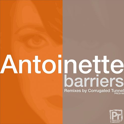 Barriers by Antoinette