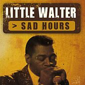 Sad Hours by Little Walter