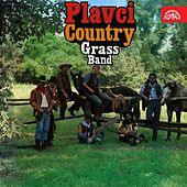 Country Grass Band by The Rangers