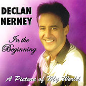 In the Beginning - A Picture of My World by Declan Nerney