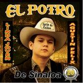 20 Exitos de Coleccion by El Potro De Sinaloa