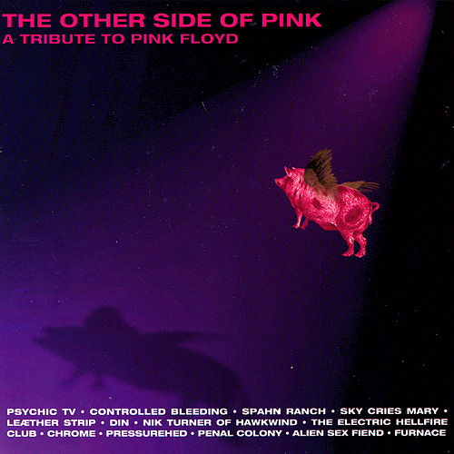 The Other Side Of Pink - A Tribute To Pink Floyd by Various Artists