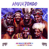 An Image of Africa by Amampondo