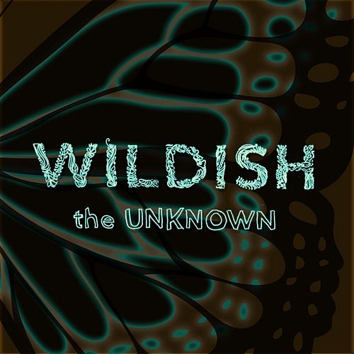 The Unknown by Wildish