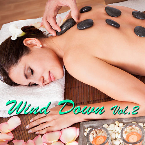 Wind Down Vol. 2 by Various Artists