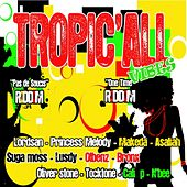 Tropic'all Vibes (Pas De Soucis Riddim / One Time Riddim) by Various Artists