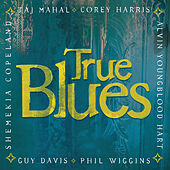 True Blues von Various Artists