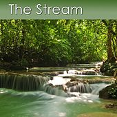 The Stream (Healing Sounds of a Stream and Meditation Music) by Dr. Harry Henshaw