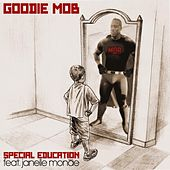 Special Education (feat. Janelle Monáe) by Goodie Mob