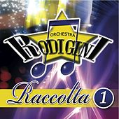 Raccolta, Vol. 1 by I Rodigini