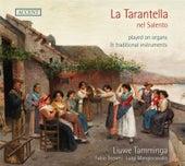 La Tarantella nel Salento by Liuwe Tamminga