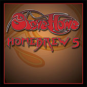 Homebrew 5 by Steve Howe