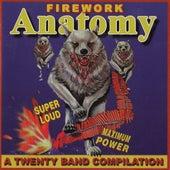 Firework Anatomy - A Twenty Band Compilation von Various Artists