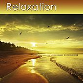 Relaxation (Relaxing Music for Your Serenity and Health) by Dr. Harry Henshaw